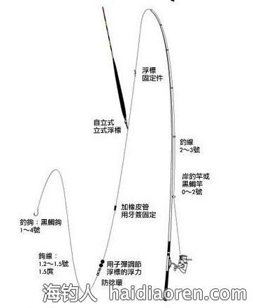 海竿或矶竿连接炸弹钩,串钩等钓组装饵后远抛绷线守钓,这种钓法虽然